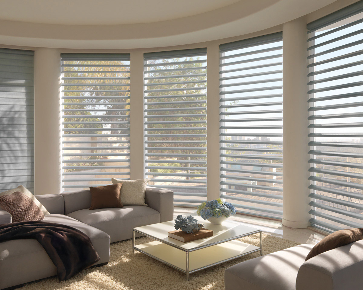 Window treatments custom blinds scottsdale gallery of shades for Best shades for windows
