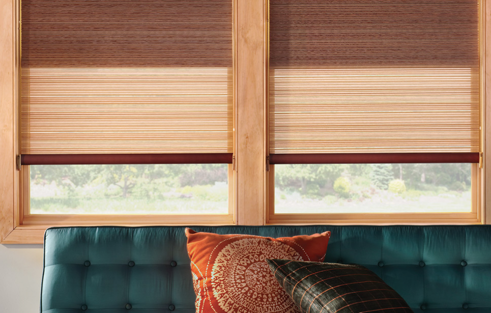 Roller shades 1 Aug