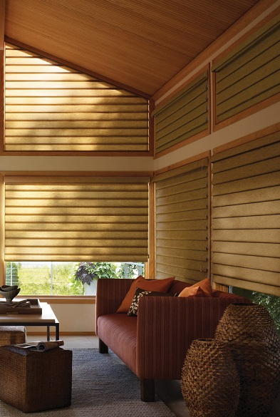 Caring For Your Modern Roman Shades Window Treatments Custom